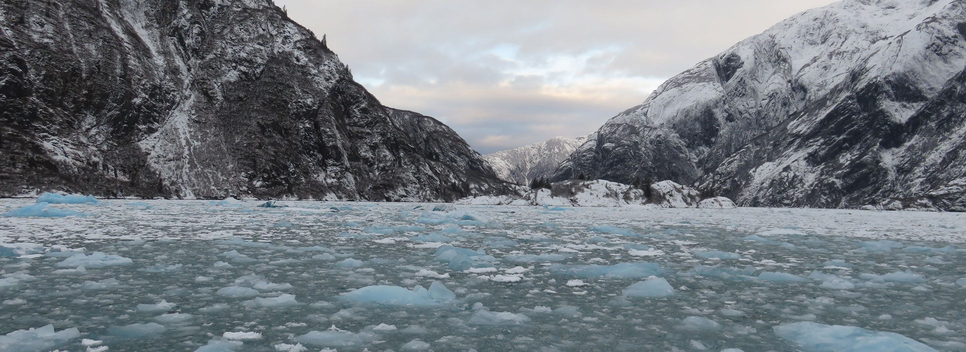 Tours & Adventures With Glacier Bay