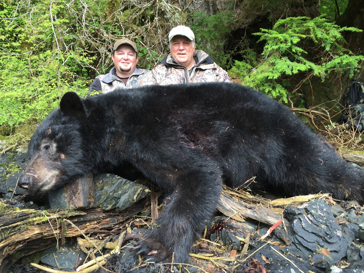 Black Bear & Wolf Hunting