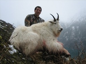 Mountain Goat Hunting
